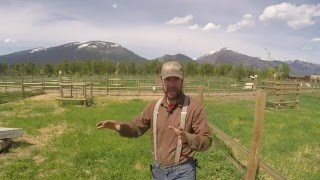 Download ABC acres: Follow up for Feedback: Pasture Restoration - episode #027 Video