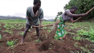 Download Governing Land for Women and Men Video