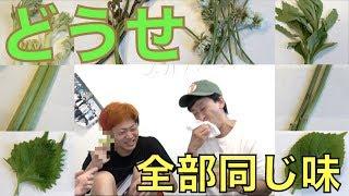 Download 【検証】「山菜」って別にどんな植物でもいいんじゃね? Video
