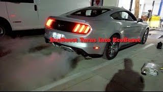 Download EcoBoost Turns Into EcoBeast ( Straight Pipe Ecoboost) Video
