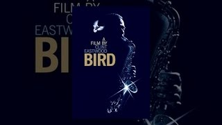 Download Bird Video