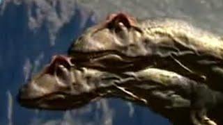 Download Dinosaur mating rituals - Walking with Dinosaurs - BBC Video