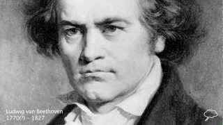 Download Ludwig van Beethoven Biography Video