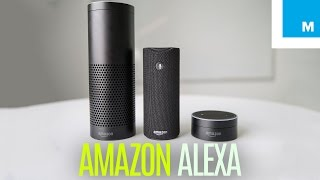 Download Amazon Echo, Dot & Tap: Which Alexa Device is for You? | Plugged In Video