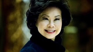 Download Trump picks Elaine Chao as transportation secretary Video