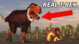 Download MYTHS About Dinosaurs You PROBABLY Still Believe! Video