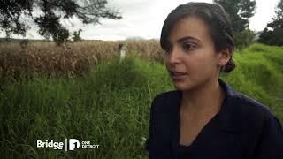 Download Life After Deportation | MiWeek Clip Video