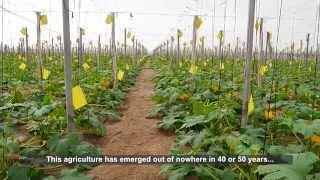 Download La agricultura familiar en Almería: un modelo sostenible. Video