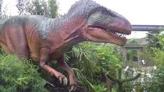 Download Dinosaurs Alive! Chester Zoo AMAZING DISCOVERY Video