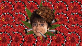 Download Harry Potter and the MLG Stoner [MLG Harry Potter] Video