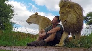 Download An Unbreakable Bond | The Lion Whisperer Video
