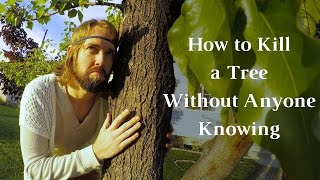 Download How To Kill A Tree Without Anyone Knowing - How To Kill A Tree - Journey To Sustainability Video