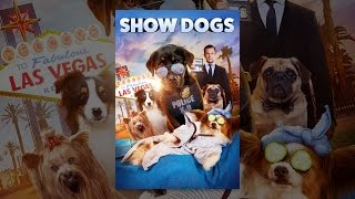 Download Show Dogs Video