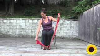 Download Seated Theraband Exercise for Seniors Video