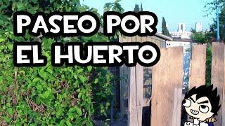 Download Paseo por el Huerto | La Huerta de Iván Video