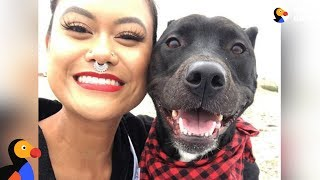 Download Woman Rescues Dog Who Ends Up Rescuing Her | The Dodo Video