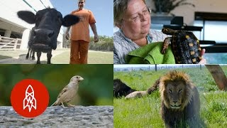 Download Be Moved by Their Compassion for Animals Video