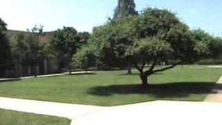 Download UNC Asheville mini Tour Video