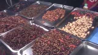 Download Ulat dan Serangga - Makanan di Thailand Video