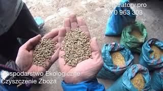 Download Czyszczenie Zbóż Ekologicznych Owies,Żyto, Mieszanka Separator 5 t/h Video
