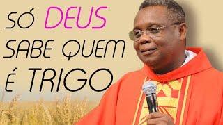 Download Só Deus sabe quem é trigo e quem e joio - Pe. José Augusto (28/07/09) Video