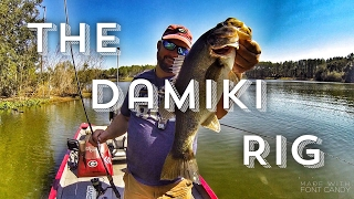 Download Bass Fishing - How to Fish the Damiki Rig Video