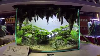 Download Aquascape Contest - A'Combat Tank 600 Video