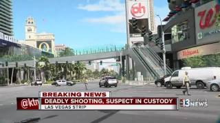 Download Deadly shooting leads to standoff on the Las Vegas Strip Video