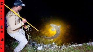 Download SPEAR FISHING EXOTICS from LAND at NIGHT! Video