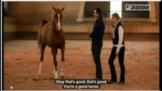 Download A Horse is a Reflection Of YOU - Same Horse Moved By Two People Notice The Difference Video
