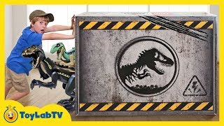 Download Giant LEGO Dinosaur Toys Surprise! Build Dinosaurs with Jurassic World Fallen Kingdom Toy Playsets Video