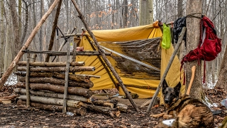 Download Overnight Bushcraft Camp with my Dog - Long Fire, Wool Blanket, Fire Reflector Video
