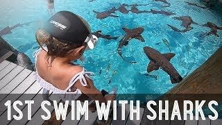 Download Kids Swimming with Sharks!! /// WEEK 107 : Bahamas Video