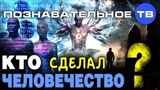 Download Кто сделал человечество? (Познавательное ТВ, Михаил Величко) Video