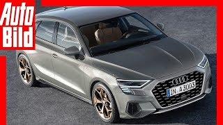 Download Zukunftsaussicht: Audi A3 (2019) Details/Erklärung Video
