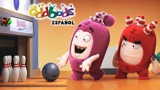 Download Dibujos Animados   Oddbods - Negado para los Deportes   Caricaturas Graciosas para Niños Video