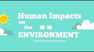 Download Human Impacts on the Environment Video