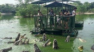 Download Most DANGEROUS Tourist Locations With Dangerous Animals! Video
