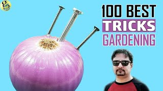 Download 100 Best GARDENING HACKS AND IDEAS by Garden Tips - Beginners to Experts Video