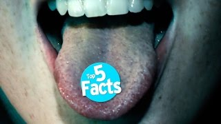 Download Top 5 Facts About MDMA Video