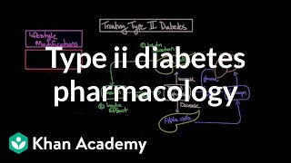 Download Treating type II diabetes - Pharmacology | Endocrine system diseases | NCLEX-RN | Khan Academy Video