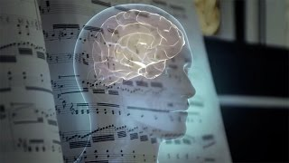 Download Are musical tastes cultural or hardwired in the brain? Video