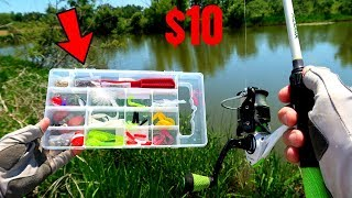 Download $10 Fishing Kit MULTI SPECIES Challenge (Unexpected Fish Catch!) Video