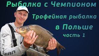 Download Рыбалка с чемпионом! Фидерная ловля трофейного леща в Польше! Video