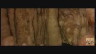 Download E'...vviva la Grotta del Trullo Video