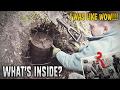 Download Mystery treasure can? German supply box? WW2 metal detecting Video