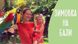 Download Зимовка на острове Бали: 5 причин интересно и недорого отдохнуть с ребенком   Family is... Video