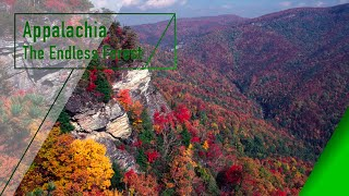 Download Appalachia - The Endless Forest - The Secrets of Nature Video