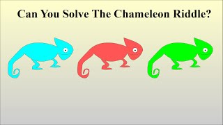 Download Can You Solve The Chameleon Riddle? Video