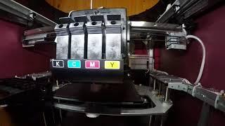 Download Davinci Color Timelapse 3d print tiger Video